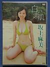 Shiroisuhada
